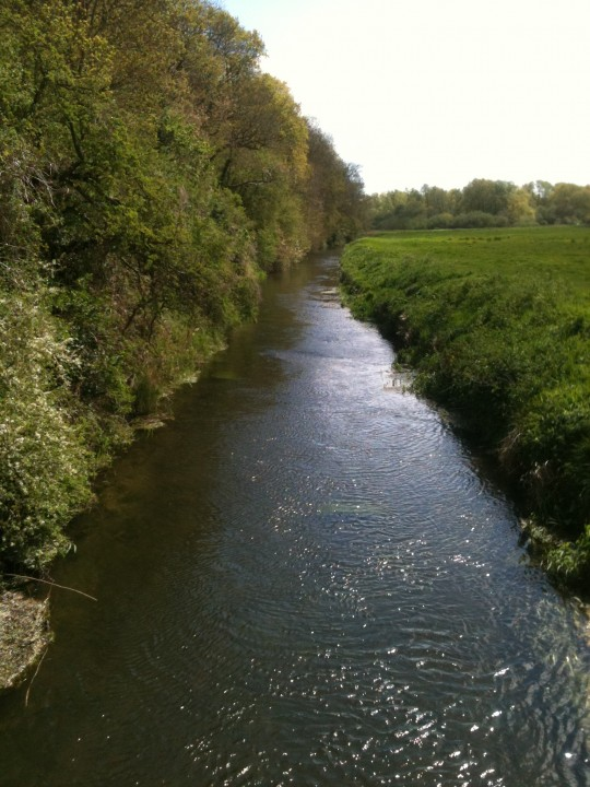 Sparkling waters down by the Little Stour River - great for walks after tea with Bessie