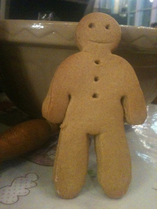 Run run as fast as you can, you can't catch me I'm the gingerbread man